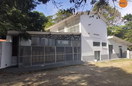 Ponto Comercial para Alugar, Vila Amélia