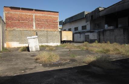Terreno para Alugar, Vila Maria