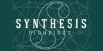 Lançamento Synthesis Pinheiros