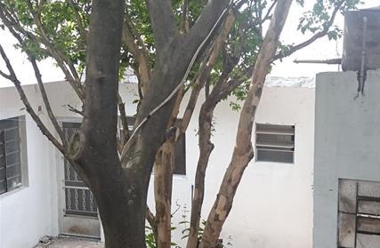 Sobrado / Casa para Venda, Pirituba
