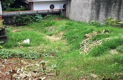 Terreno para Venda, Vila Progredior