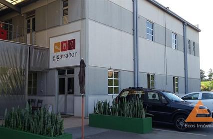 Galpão / Salão para Alugar, Santa Fé
