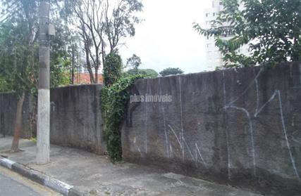 Terreno para Alugar, Vila Parque Jabaquara