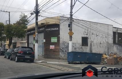Galpão / Salão para Alugar, Vila Paulista