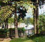 Imagem Nova Shekinah Consultoria Imobiliária - Jd. Marajoara