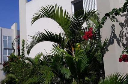 Condomínio Fechado para Venda, Jardim Prudência