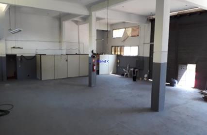 Galpão / Salão para Alugar, Vila Firmiano Pinto