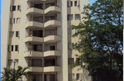 Apartamento para Alugar, Jardim Bélgica
