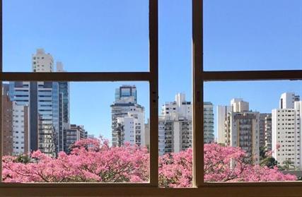 Condomínio Fechado para Venda, Chácara Monte Alegre