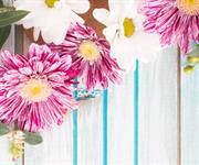 Imagem Receba a primavera com grande estilo