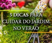 Imagem 5 dicas para cuidar do jardim no verão
