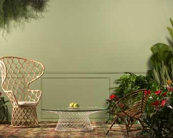 Imagem Dicas para colaborar com o Meio Ambiente em sua casa