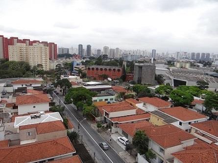 Imagem Dengue e o mercado imobiliário qual a relação?