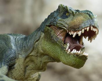 Imagem Shopping D promove exposição com dinossauros gigantes